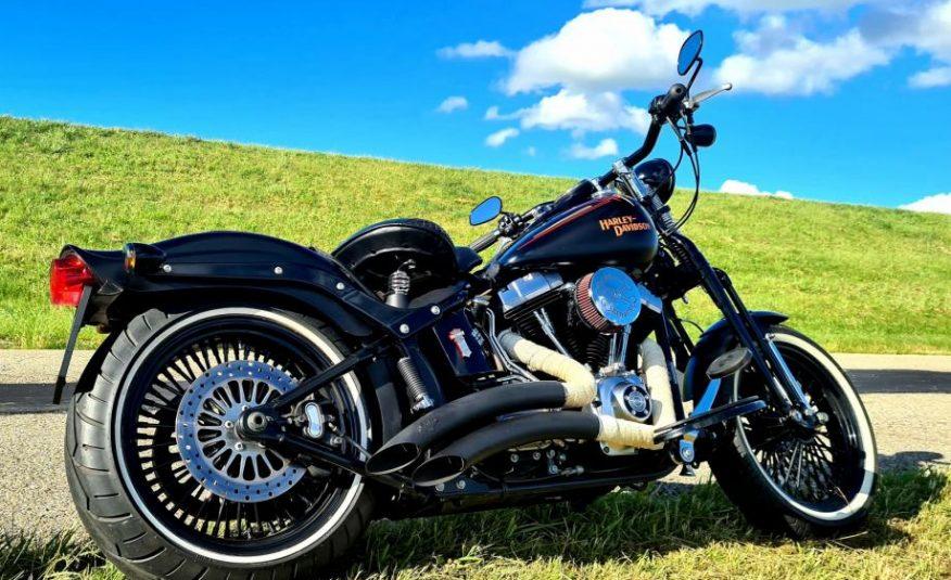 Harley Davidson FLSTSB Cross Bones 1584 cm3