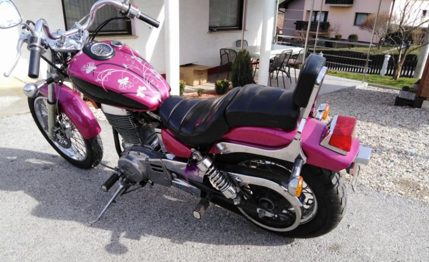 Suzuki LS 650        25KW